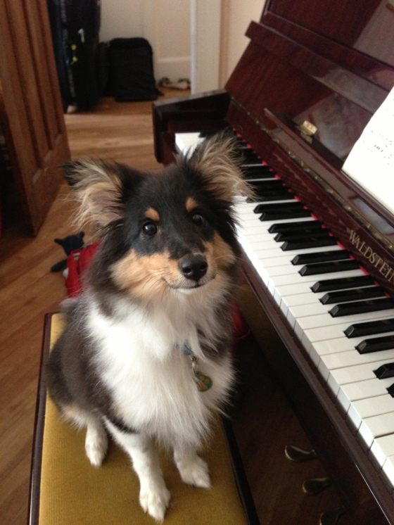 He learnt to play the piano!